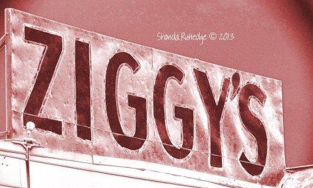 ziggys2